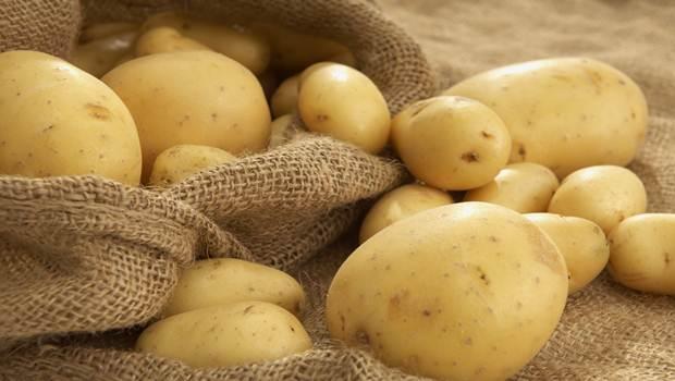 khoai tây chữa nám da