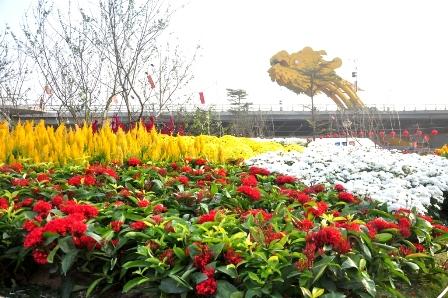 """""""Bản đồ Việt Nam bằng hoa lớn nhất"""" được thực hiện trên diện tích 378,1 m2 bên bờ Đông sông Hàn"""