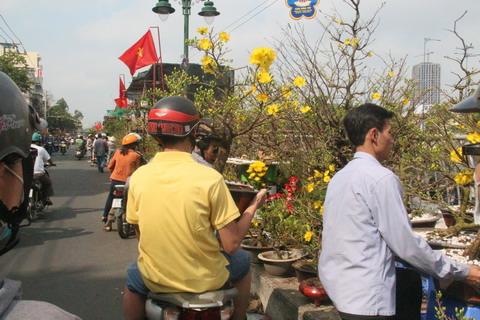 đường hoa, bến Bình Đông, quận 8, TPHCM