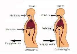 6 nguyên tắc bệnh nhân COVID - 19 sau khi phục hồi cần nhớ - Ảnh 4.