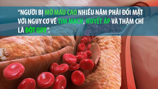 Mỡ máu cao nhiều năm khiến cơ thể đối mặt với tim mạch, huyết áp, đột quỵ - Ảnh 1.