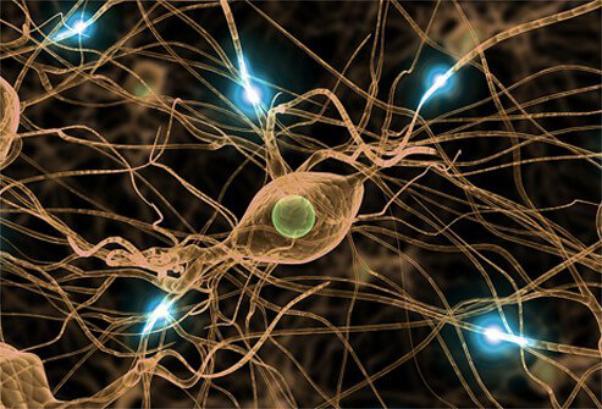 Bệnh thần kinh do rượu là một dạng tổn thương thần kinh do lạm dụng rượu.jpg