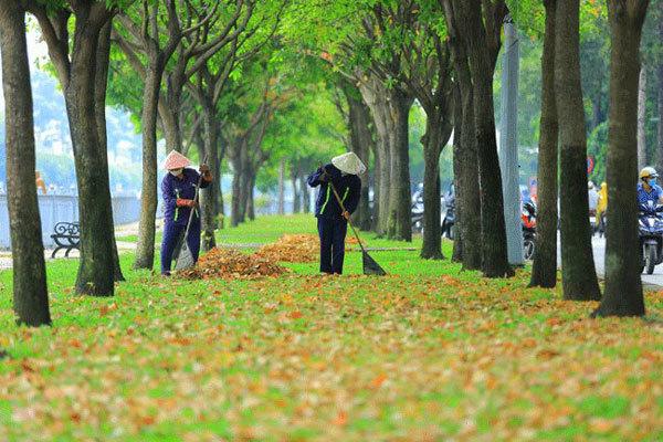 Thư Sài Gòn (số 25): Sài Gòn thu vẫn âm thầm hương sắc - Ảnh 2.