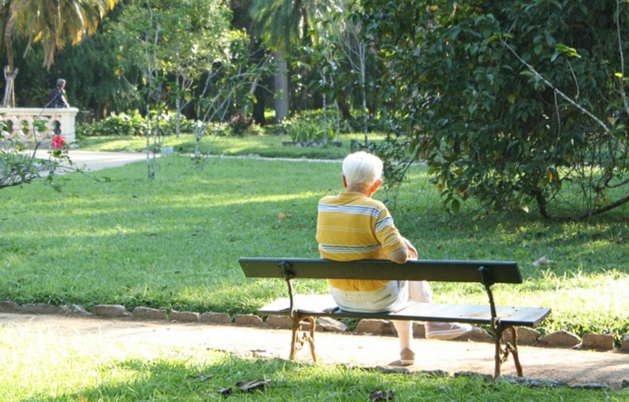 10 lời khuyên giúp người cao tuổi sống khỏe trong mùa dịch - Ảnh 3.