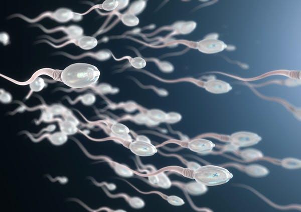 COVID-19 và vaccine COVID-19 có thể gây vô sinh nam và rối loạn chức năng tình dục không? - Ảnh 2.