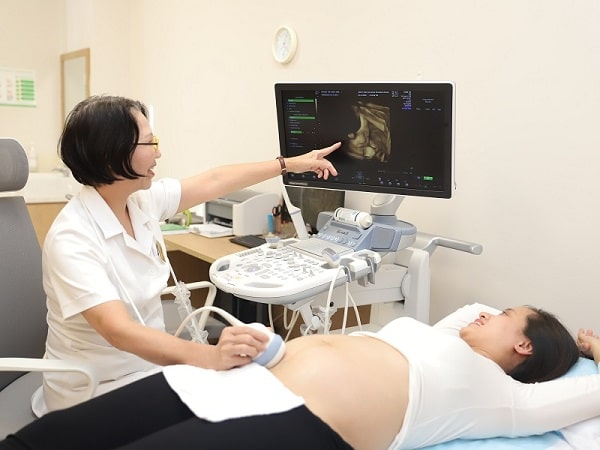 3 thời điểm siêu âm quan trọng thai phụ cần nhớ - Ảnh 3.