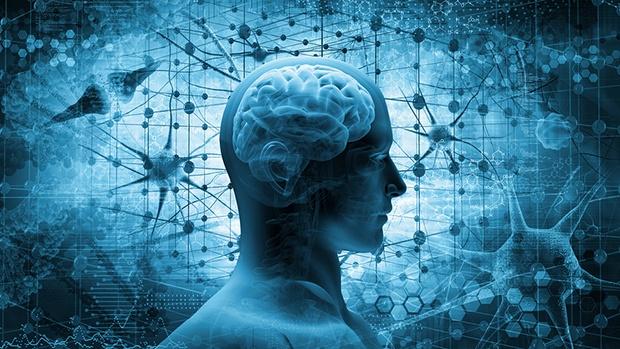 6 bí quyết và 3 bài tập duy trì não bộ khỏe mạnh - Ảnh 1.