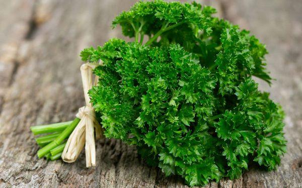 Rau mùi tây – thảo mộc hữu ích cho bệnh nhân sỏi thận - Ảnh 1.