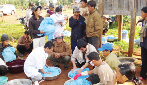 Nhiều lao động tự do có nguy cơ mắc sốt rét 1