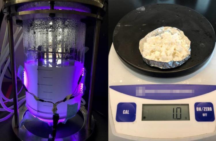 Một gram nhựa có thể phân hủy sinh học được tạo ra bởi vi khuẩn nanobio-hybrid.