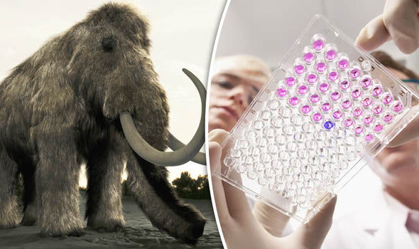 Nhờ CRISPR, các loài vật đã tiệt chủng sẽ được hồi sinh.
