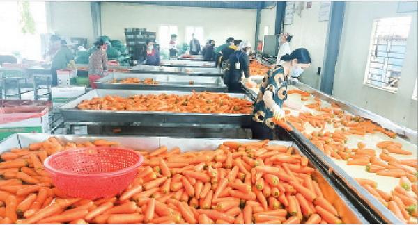 95% doanh nghiệp của Hải Dương đã trở lại hoạt động trong điều kiện đảm bảo công tác phòng dịch.