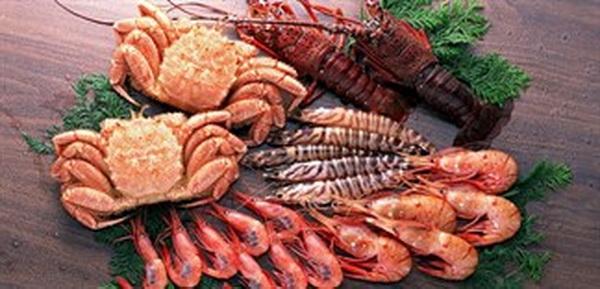 Người có cơ địa dị ứng nên thận trọng khi ăn hải sản.