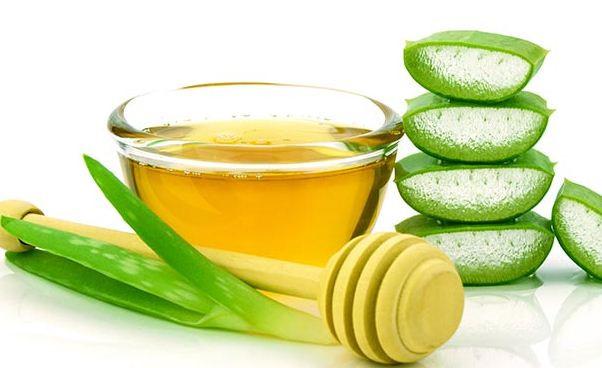 Những thảo dược có công dụng dưỡng da rất tốt trong mùa đông.