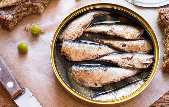 cá mòi tạo collagen