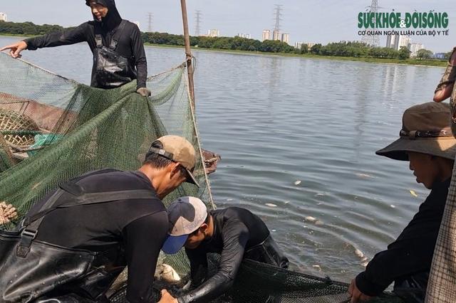 """Hàng chục người nhộn nhịp đánh bắt cá """"chui"""" ở Hà Nội, không ai bị xử phạt - Ảnh 7."""