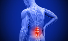 Hy vọng về một loại thuốc mới bảo vệ đĩa đệm cột sống giảm đau lưng do tuổi tác