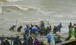 Người dân Hà Tĩnh ra biển vớt 'lộc trời' giữa mưa rét