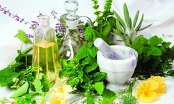 Xông hơi bằng thảo dược nâng cao sức khỏe trong mùa dịch