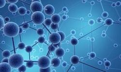 Nano chiết xuất dây đau xương – Công thức cho người thoái hóa khớp