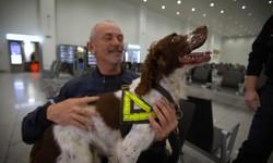 Cảnh sát Bỉ huấn luyện chó nghiệp vụ phát hiện âm mưu đánh bom khủng bố