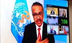 Đại hội đồng Y tế Thế giới tôn vinh đội ngũ y tế, điều dưỡng toàn cầu