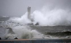 Chìm tàu trên vịnh Tokyo:  Hiện vẫn còn 3 người mất tích trong đó có 1 thủy thủ Việt Nam