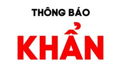 Hà Nội thông báo khẩn tìm người trên chuyến bay từ sân bay Tân Sơn Nhất đến Thọ Xuân
