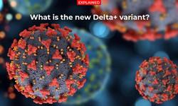Từ Delta đến biến thể Delta plus: Ấn Độ đứng trước nguy cơ dịch bệnh quay lại