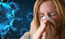 Bài thuốc trị bệnh ôn dịch