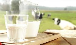 Dị ứng sữa bò ở trẻ, nhận biết và xử trí
