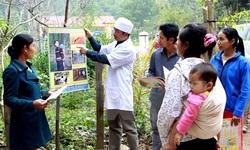Kết quả thực hiện Chiến lược phòng chống và loại trừ sốt rét tại Việt Nam giai đoạn 2011-2020
