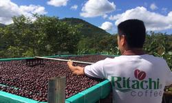 Điểm lại xu hướng thực phẩm xanh trong dịp Tết nguyên Đán 2019