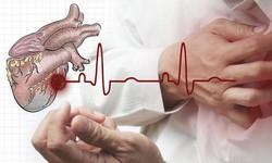 Giải pháp điều hòa huyết áp, giảm mỡ máu cho người cao tuổi bằng thảo dược