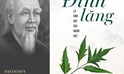 Tại sao Đại danh y Hải thượng Lãn Ông ví đinh lăng là Sâm của người Việt?