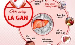 Mách bạn những thực phẩm bổ gan, giúp gan thải độc