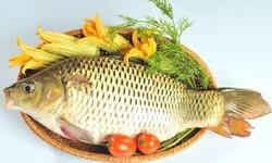 Bí quyết để món cá ngon và an toàn