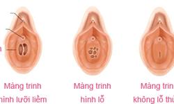 Khám phá bí mật bộ máy sinh sản của phụ nữ