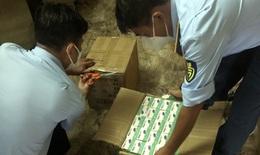 TP.HCM: Thu giữ 450 máy đo nồng độ oxy trong máu nhập lậu