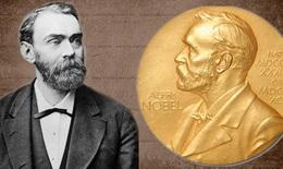 Hồi hộp mùa giải Nobel 2021: Nobel Hòa bình nhiều ứng cử viên nhất