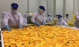 Nhiều hướng đi 'phá cách' trong kinh doanh nông sản, thực phẩm