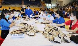 Gần 750 đơn vị máu tại Chương trình 'Giọt máu nghĩa tình vì miền Nam ruột thịt'