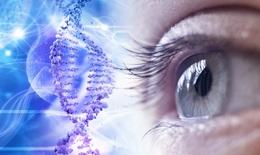 Liệu pháp gen trị các bệnh về mắt