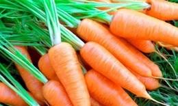 """Cà rốt bổ dưỡng - """"sâm của nhà nghèo"""""""