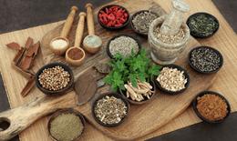 Những tiêu chí lựa chọn sản phẩm bổ gan chất lượng
