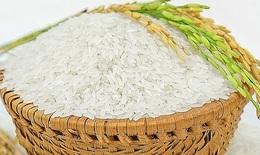 Xuất hơn 130.000 tấn gạo cho người dân khó khăn ở 24 tỉnh, thành