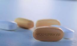 Hôm nay: Hơn 300.000 viên thuốc Molnupiravir điều trị F0 có kiểm soát tại nhà và cộng đồng về TP HCM