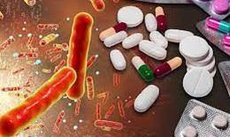 Phơi nhiễm kháng sinh sớm có thể làm thay đổi hệ vi sinh đường ruột