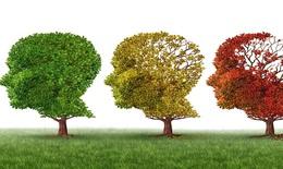 9 thói quen tốt giúp ngăn ngừa bệnh Alzheimer