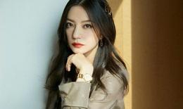 Fan cuồng của Triệu Vy, Ngô Diệc Phàm buộc Cbiz siết chặt mọi hành vi hỗn loạn trên mạng xã hội